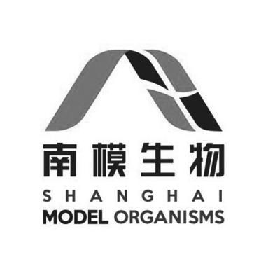 SHMO Logo